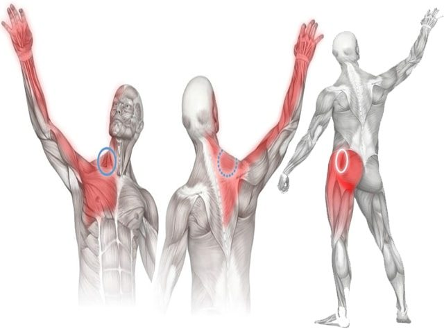 Muscle Soreness relief