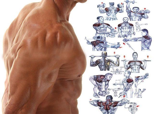 shoulder workout at home