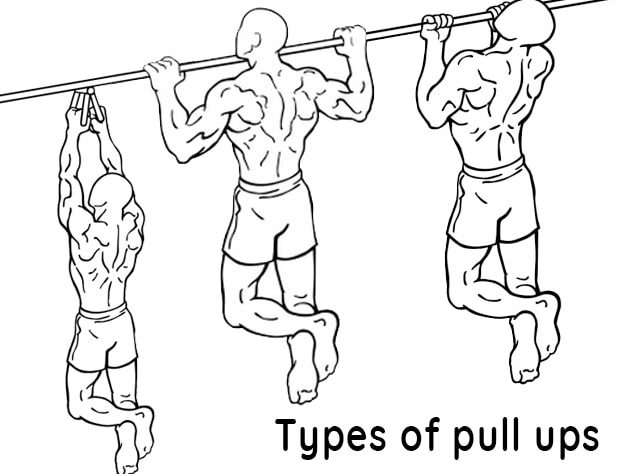 types of pull ups