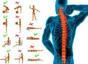 Best Exercise For Back Pain