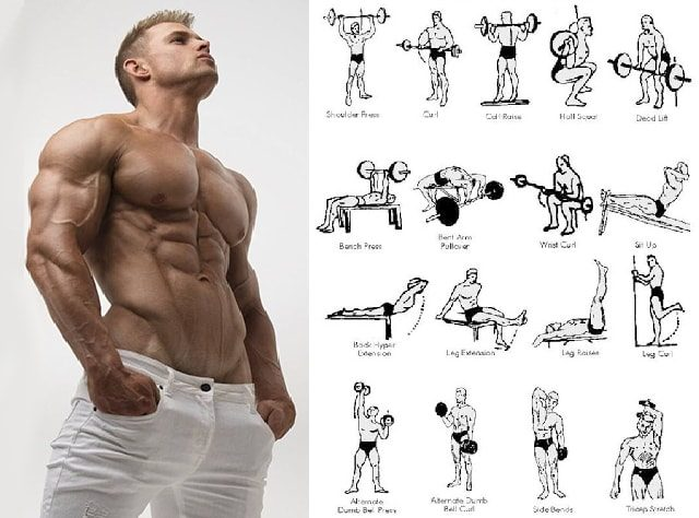 Execute Muscular Strength Exercises For Perfect Body