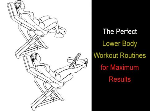 Lower Body Workout Routines